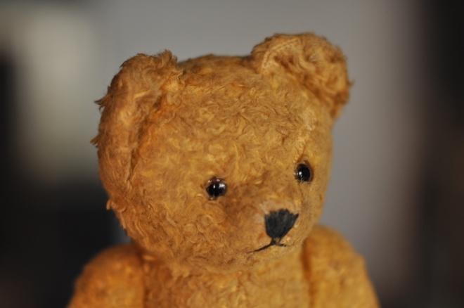 Teddy Bear3