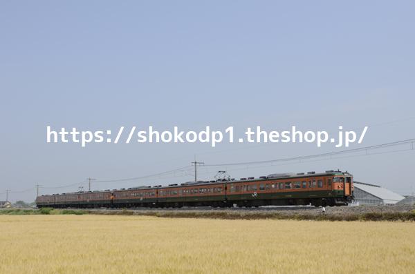 115系と田園風景_DSC3146