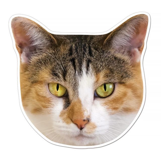 【セール】 (77mike) ケーマグ 実物大? 三毛猫 マグネット ステッカー 【レターパックライト可】