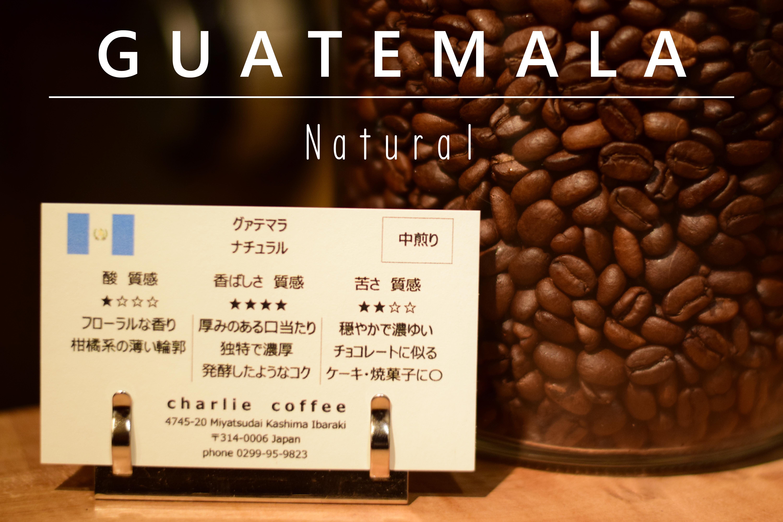 中煎り/グァテマラ ナチュラル 1kg