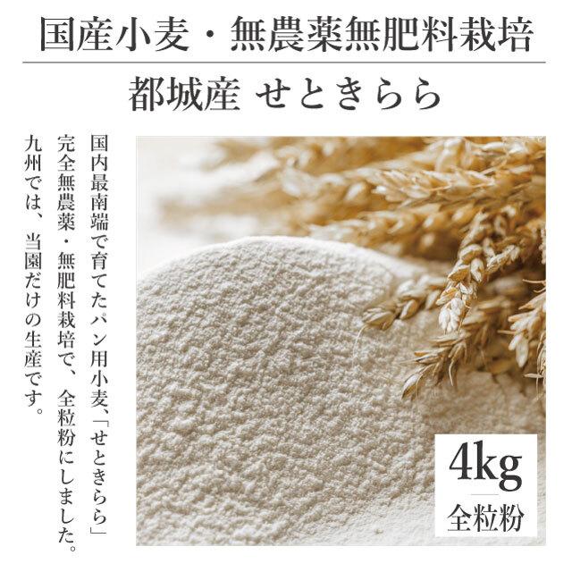 【送料別】4kg 完全無農薬・無肥料栽培 都城産小麦 [せときらら]全粒粉