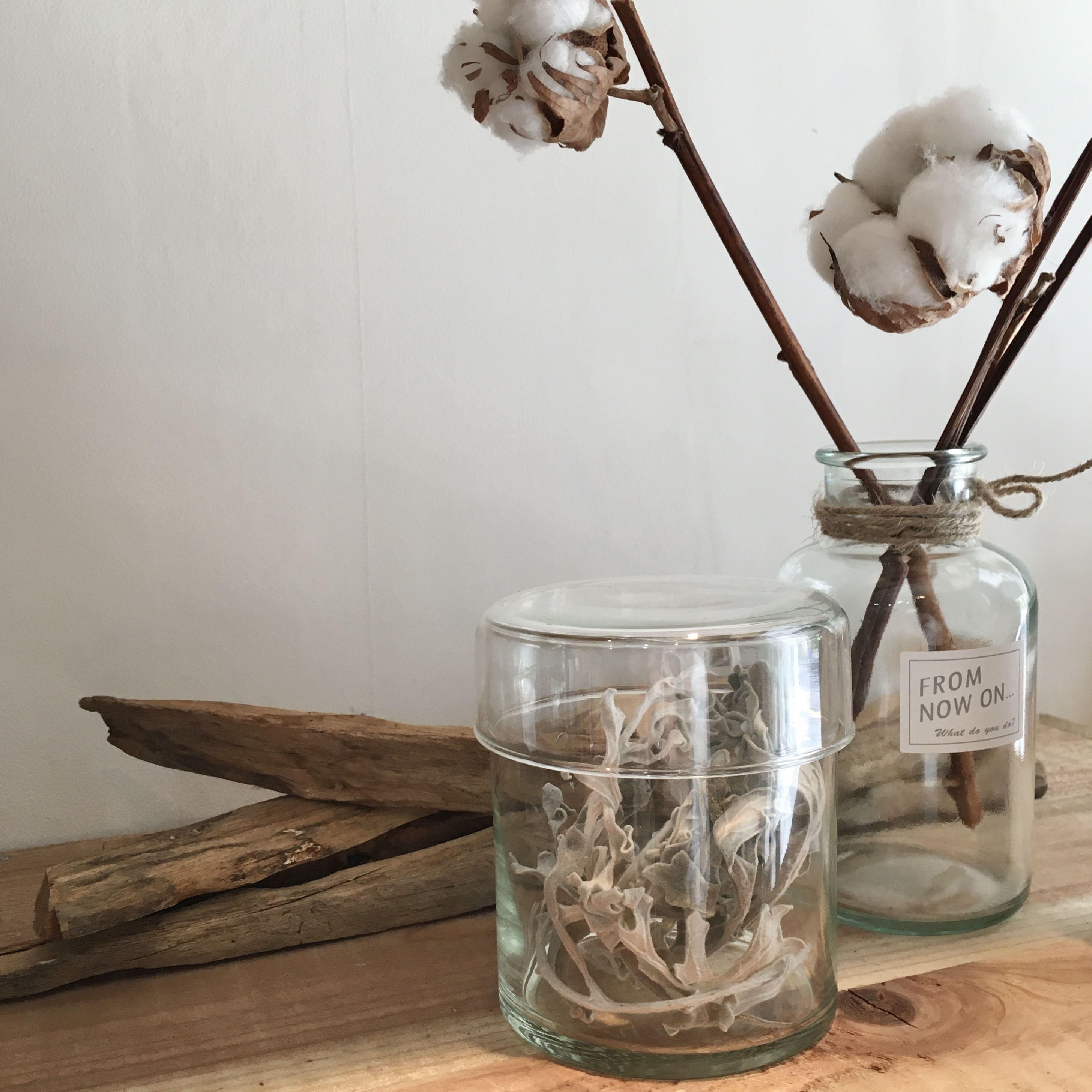 """"""" Reuse glass Canister S / リューズガラス キャニスター S """""""