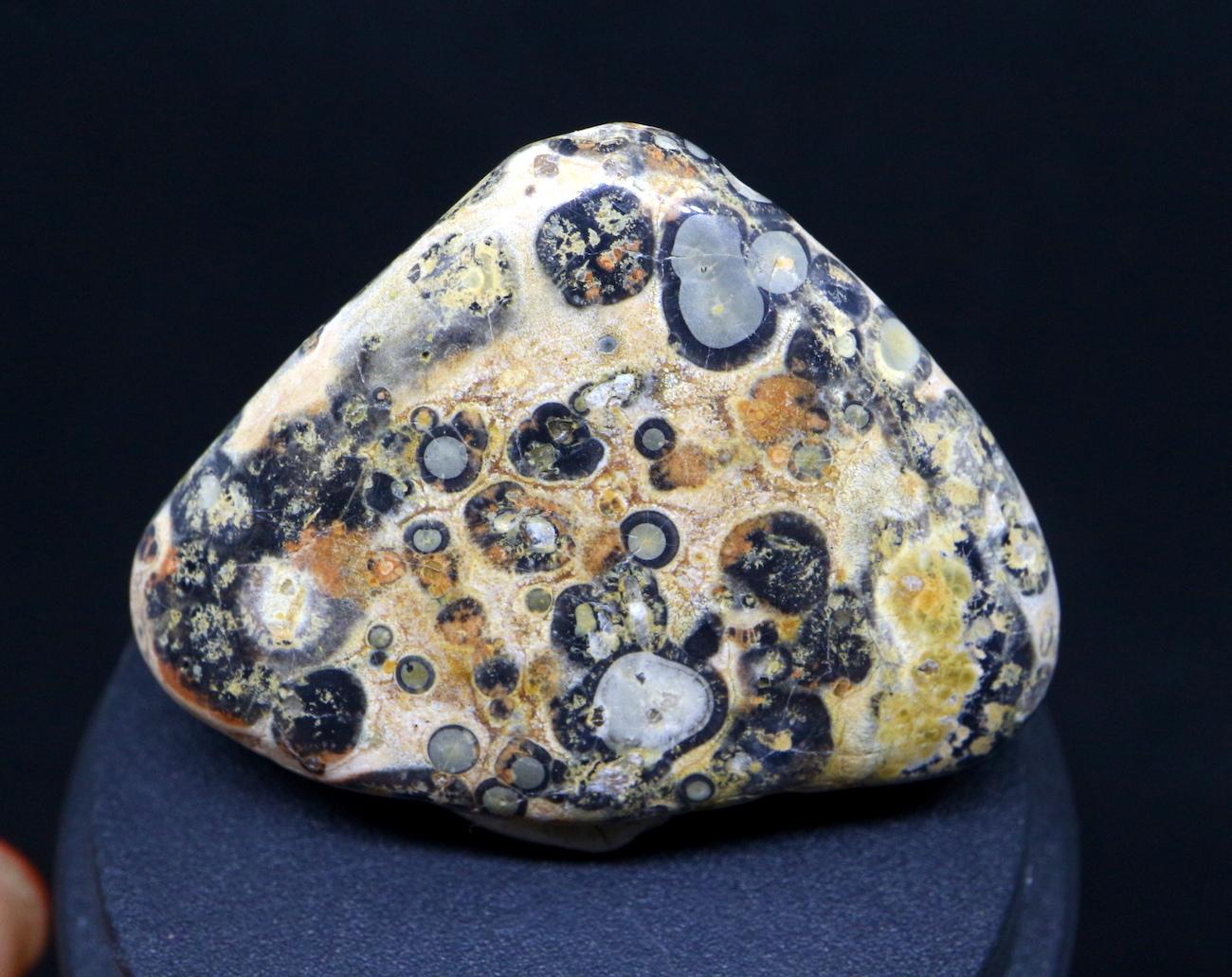 レオパードスキンジャスパー タンブル 研磨 9,9g LPJ022 原石 鉱物 天然石