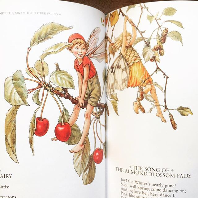 シシリー・メアリー・バーカー詩画集「The Complete Book of the Flower Fairies/Cicely Mary Barker」 - 画像3