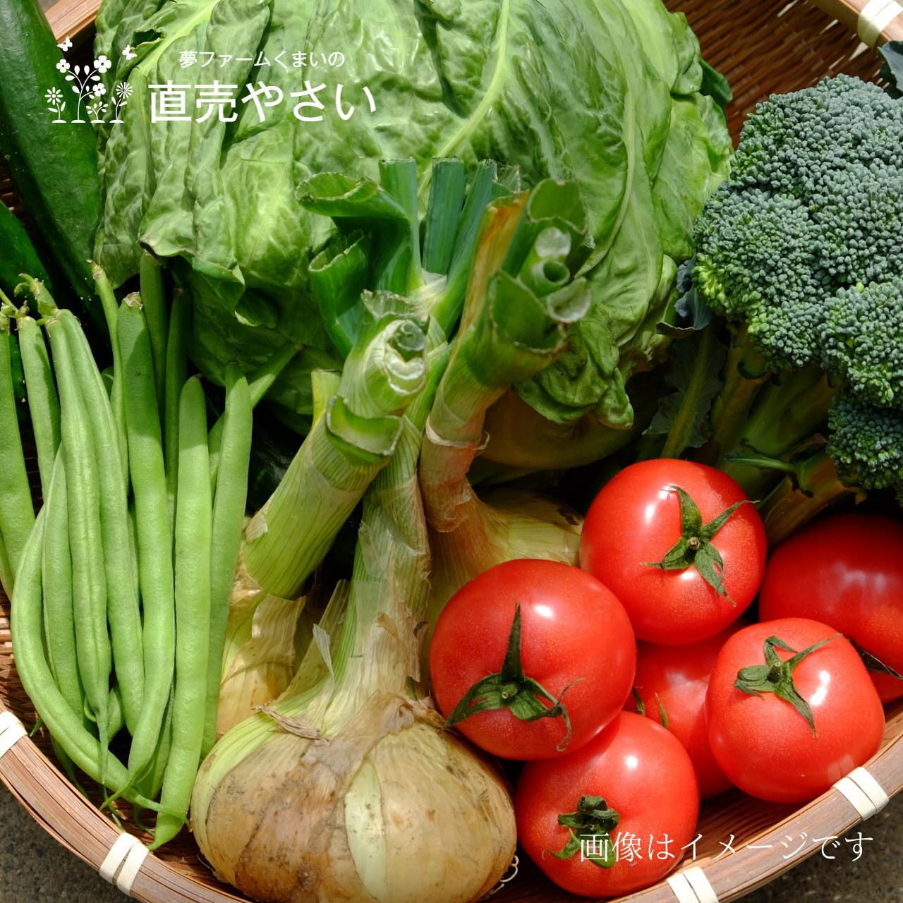 送料無料 9月の朝採り夏野菜詰合せ 8点セット 農家直売 野菜セット 毎週土曜日発送予定  【冷蔵便】