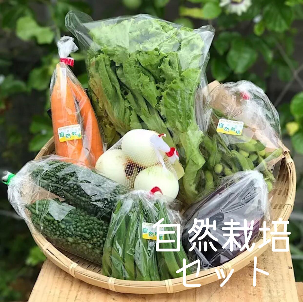 安心自然栽培野菜【M set】8品 送料無料