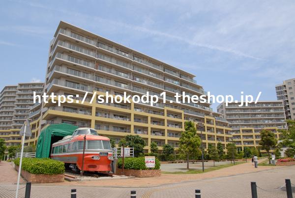 小田急3100形と団地DSC_0048