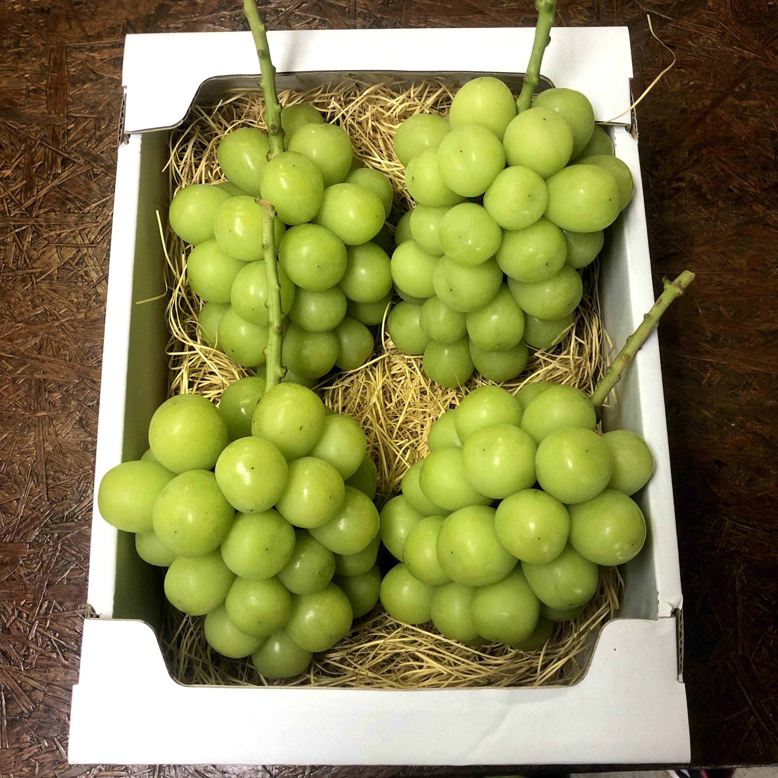 シャインマスカット 2kg(岡山県産・種なし)