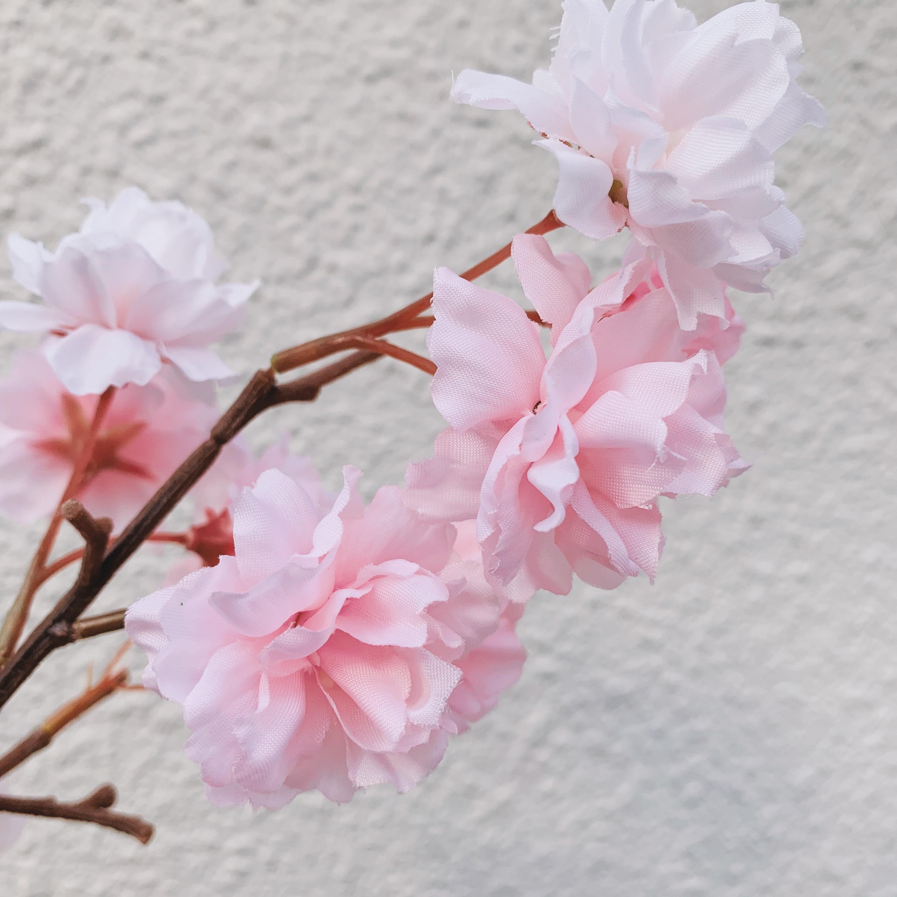 mini flower/さくら
