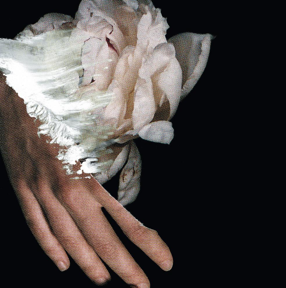 Yasuhito Fujinami - Lotus  CD - 画像1