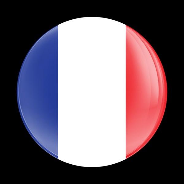 ゴーバッジ(ドーム)(CD0177 - FLAG FRANCE) - 画像1