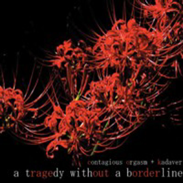 Contagious Orgasm + Kadaver  ‎– A Tragedy Without A Border Line. cd - 画像1
