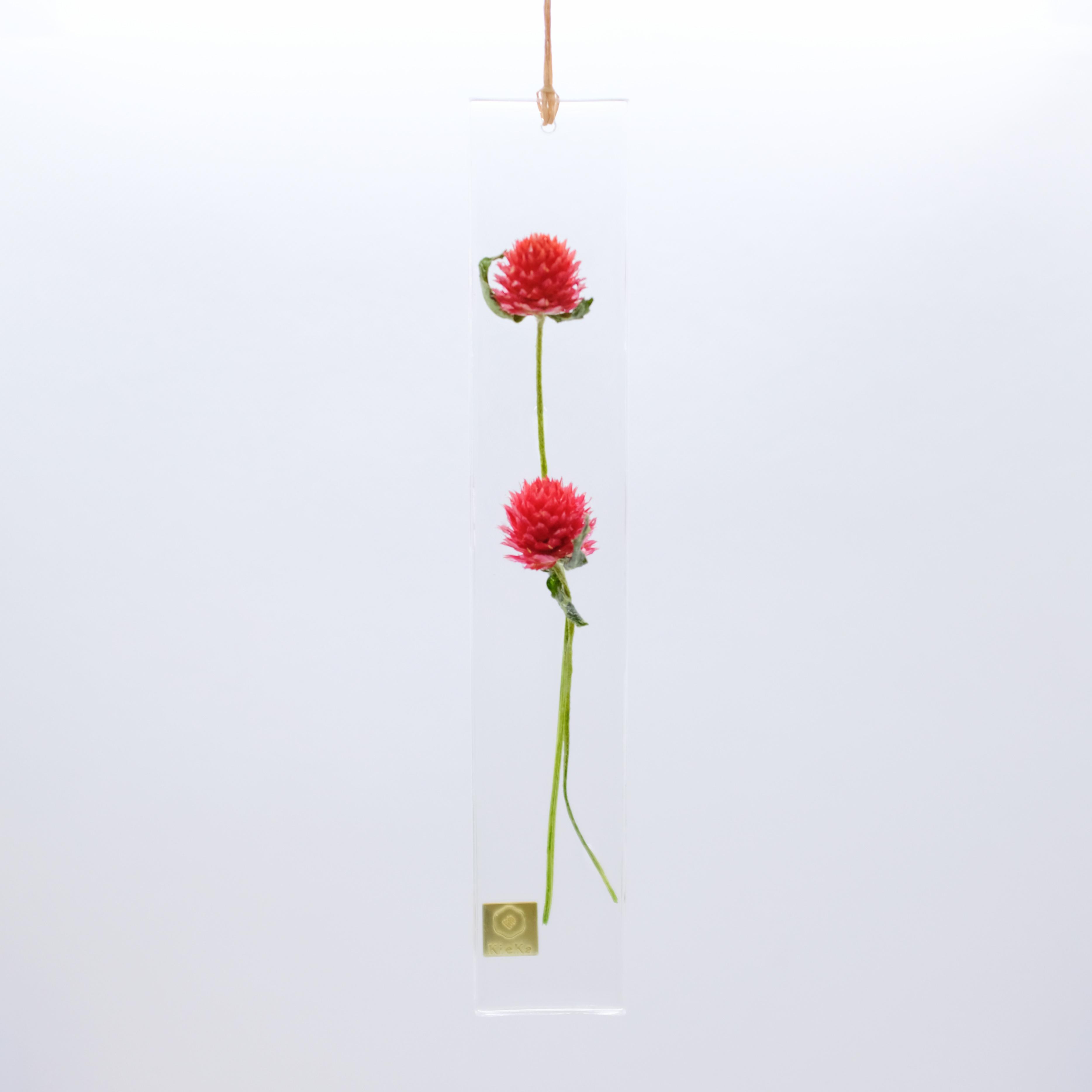 dried flower S センニチコウ レッド
