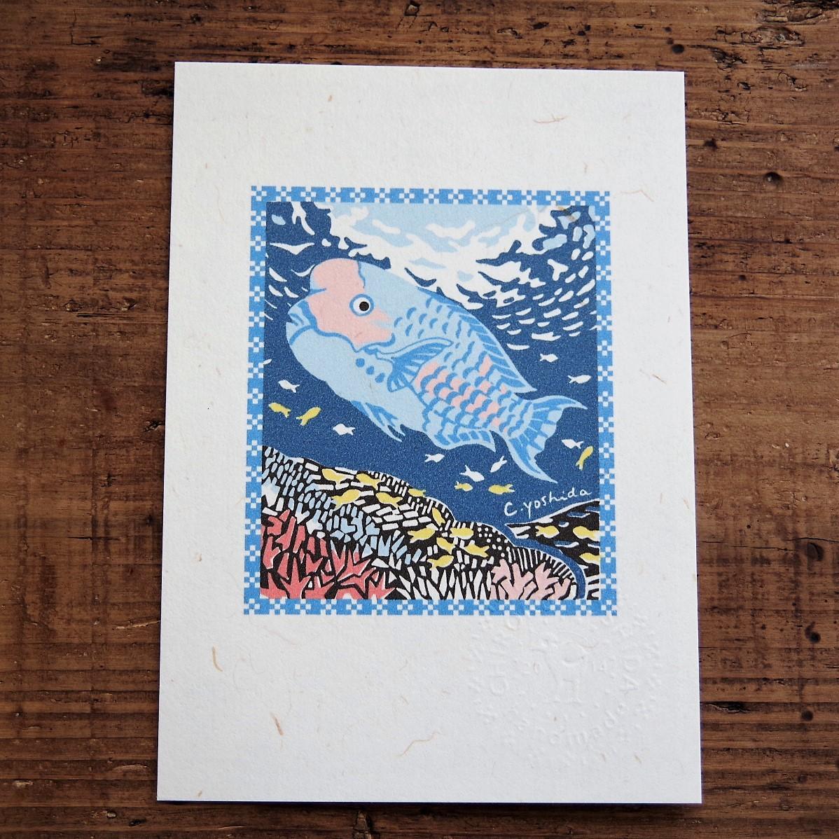 【Yoshida Chiroru】琉球ポストカード イラブチャーと珊瑚の海