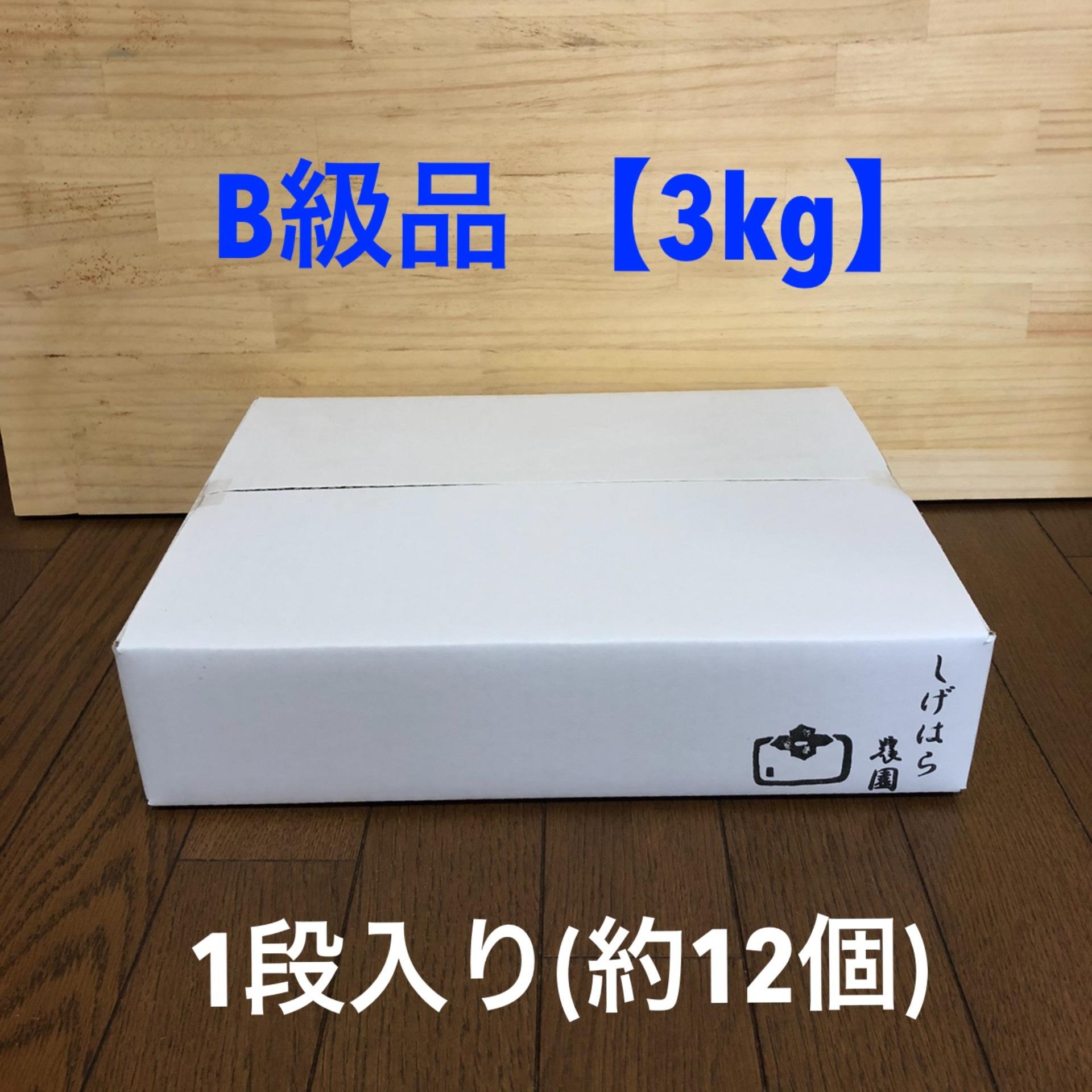 [予約販売] 次郎柿 B級品 【3kg】