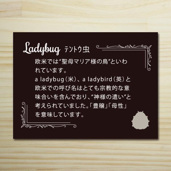 【テントウ虫】ハッピーモチーフポチ袋 PHM08-2
