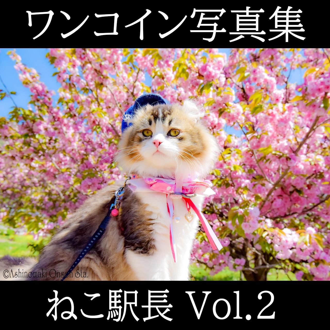 ねこ駅長 ワンコイン写真集 Vol.2