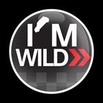 ゴーバッジ(★在庫処分★)(CD0289 - I'M WILD) - 画像1