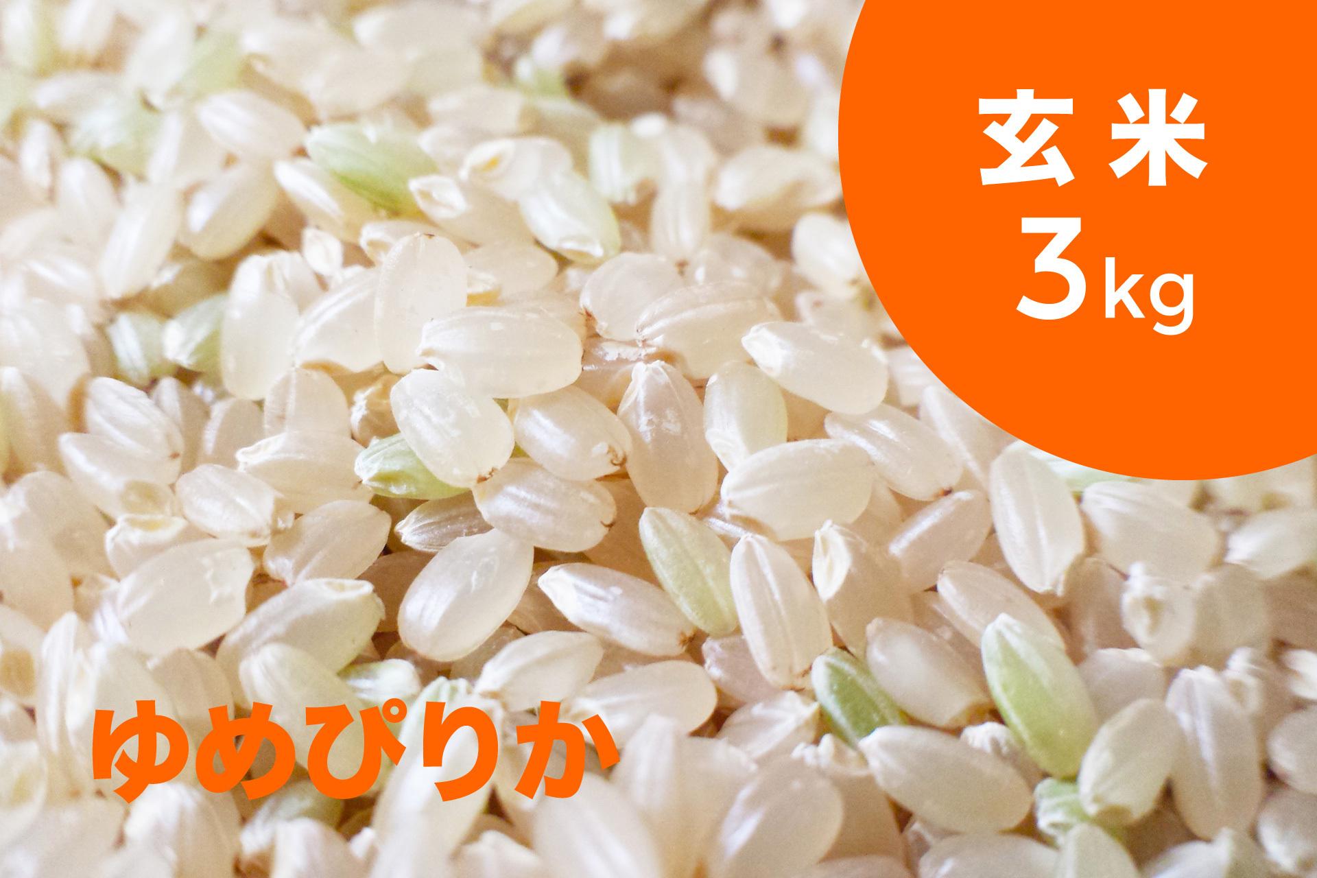 特別栽培米 ゆめぴりか(玄米)3kg【令和2年産 】