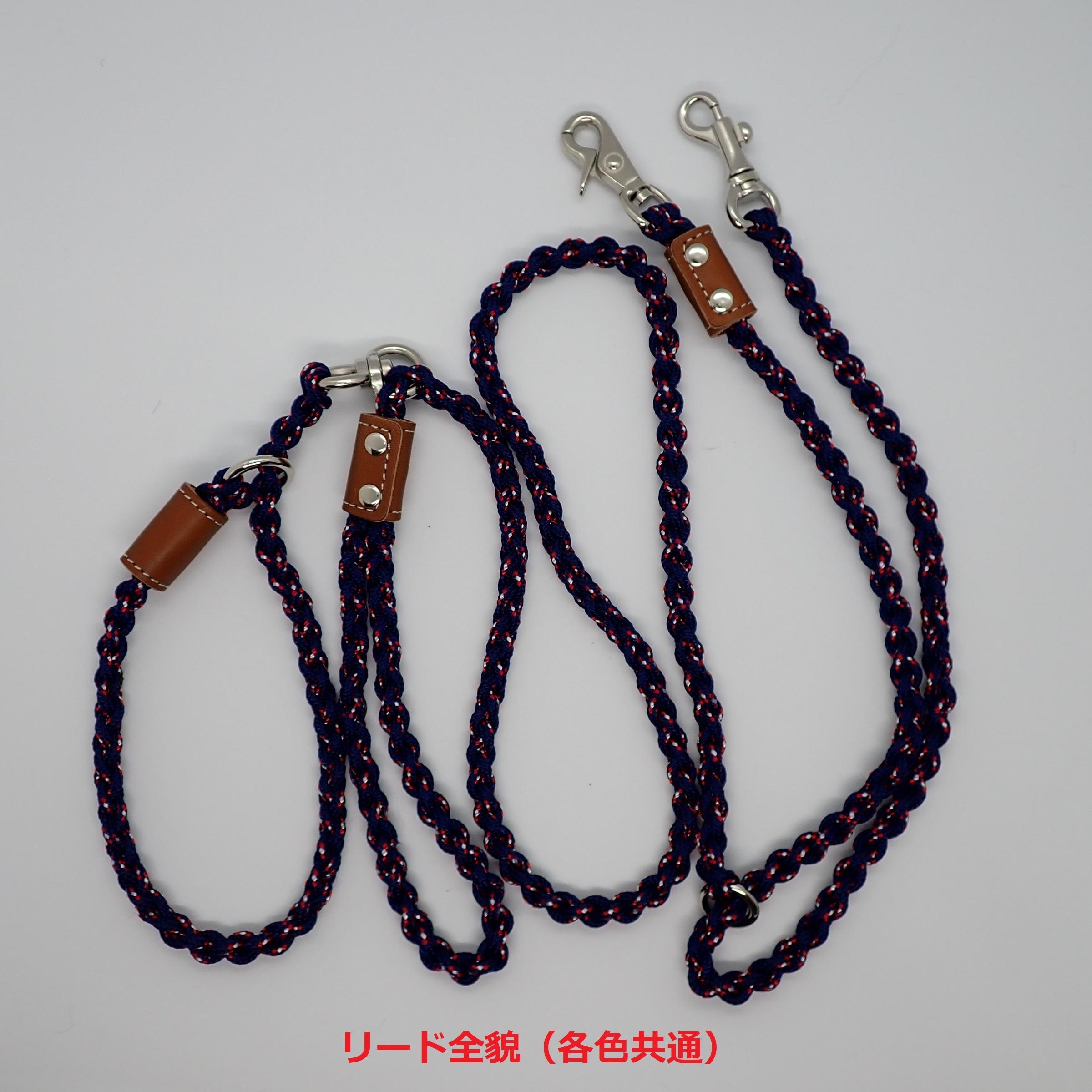 JICリード60WS<レバーナスカン&鉄砲ナスカン>