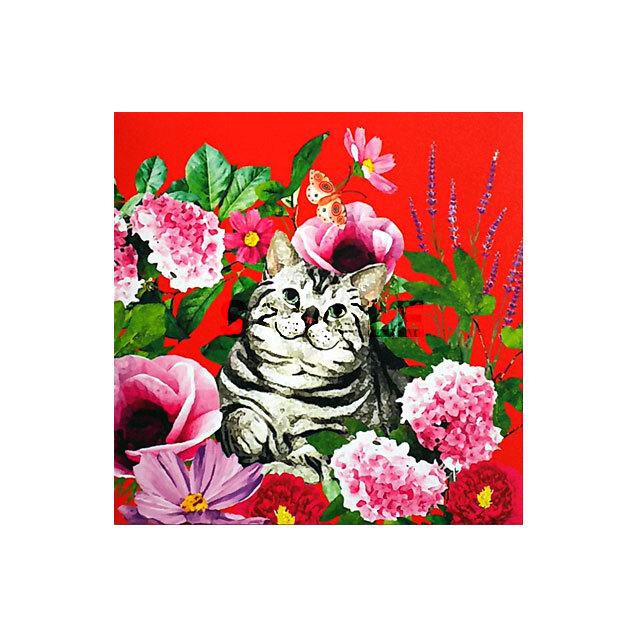 グリーティングカード 猫