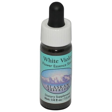 ホワイトヴァイオレット[White Violet]