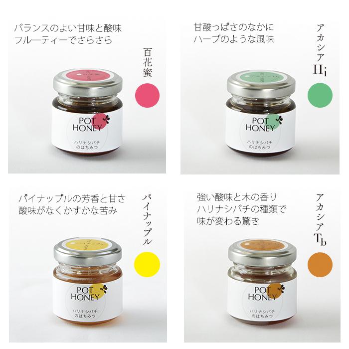 【少しお得!】ハリナシバチの蜂蜜 POT HONEY 4種食べ比べセット 各40g