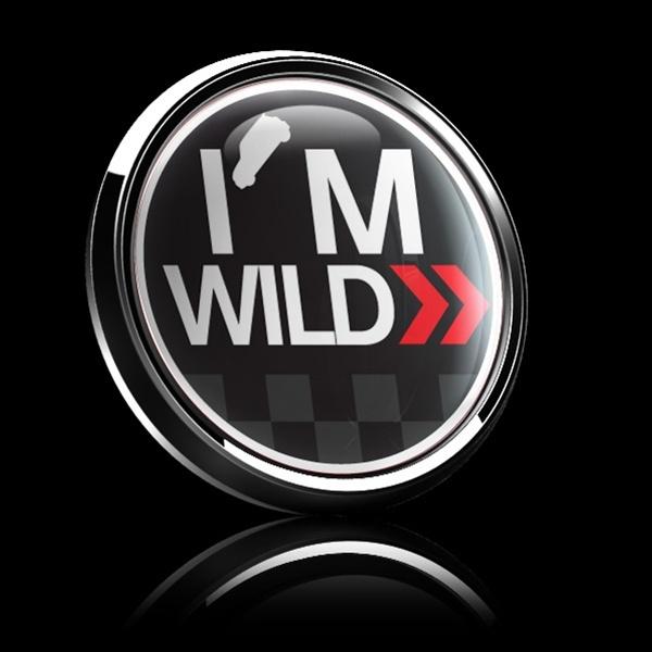 ゴーバッジ(ドーム)(CD0289 - I'M WILD) - 画像2