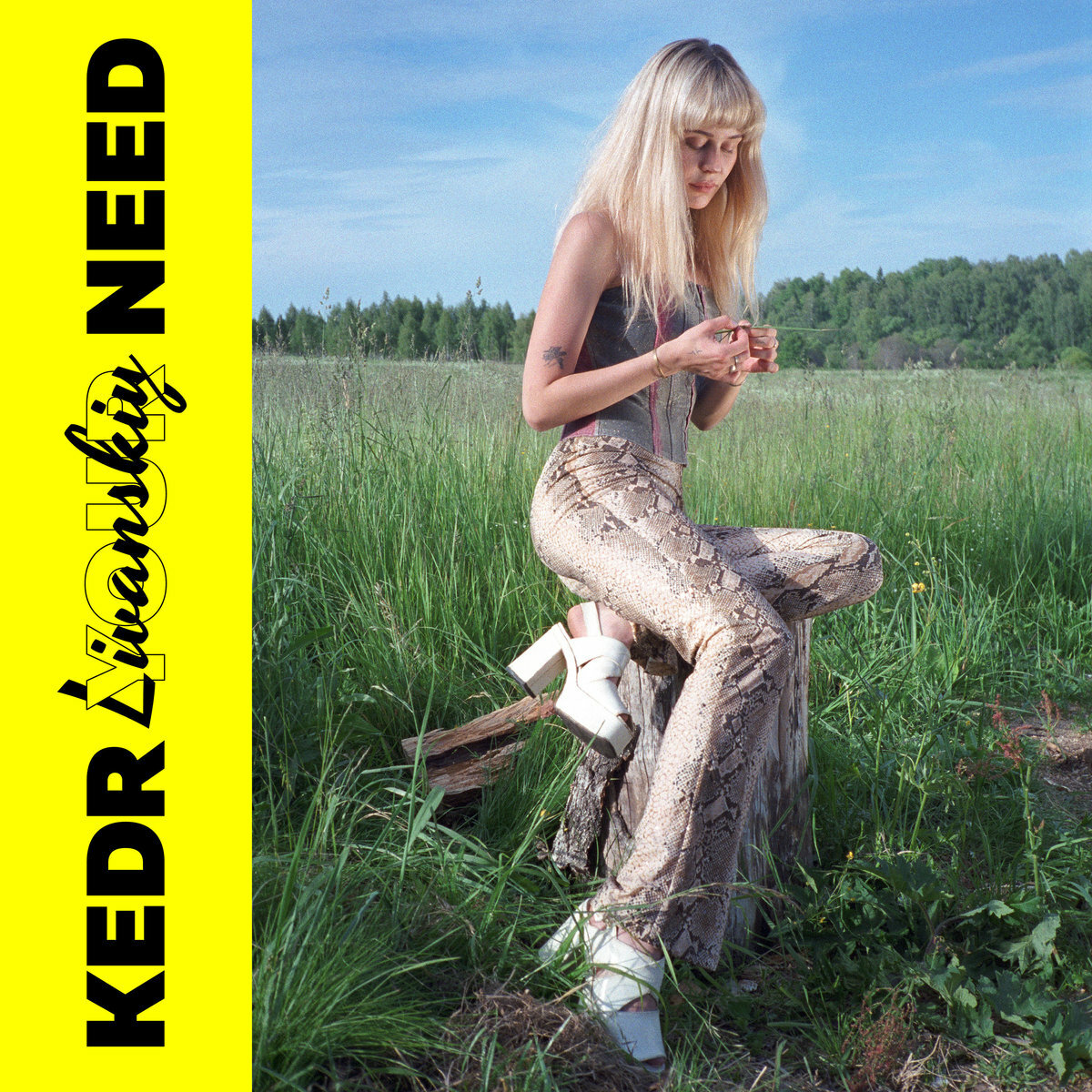 Kedr Livanskiy / Your Need(Cassette)
