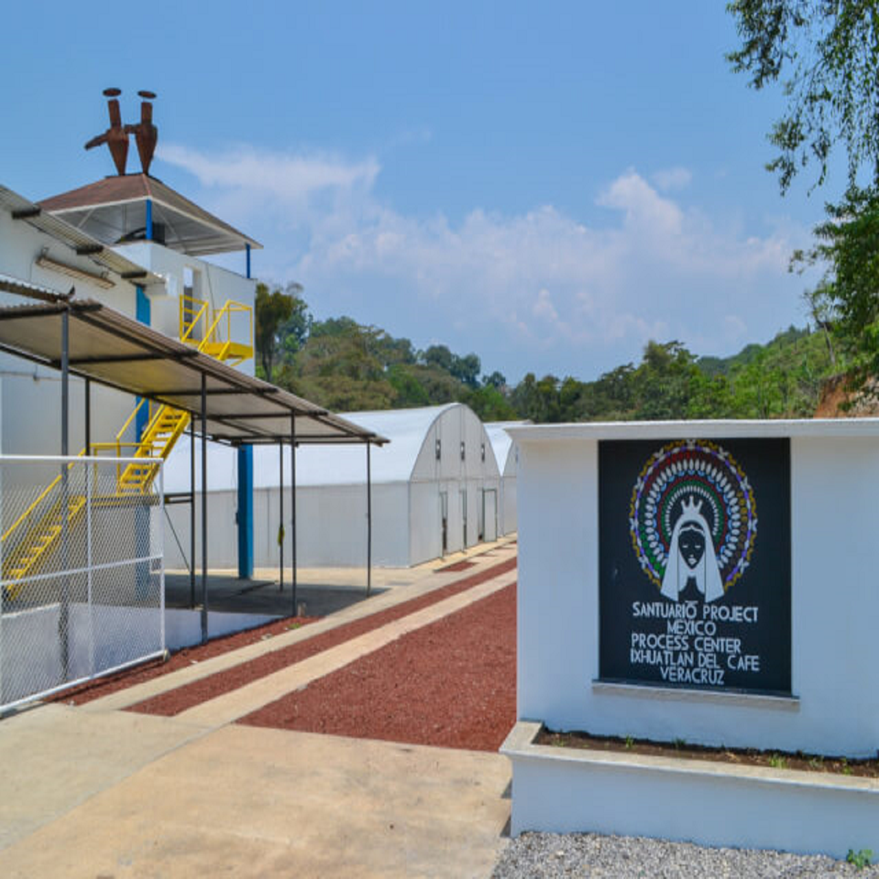 メキシコ グアダルーペ・ザフ農園  ナチュラル  ミディアムハイロースト