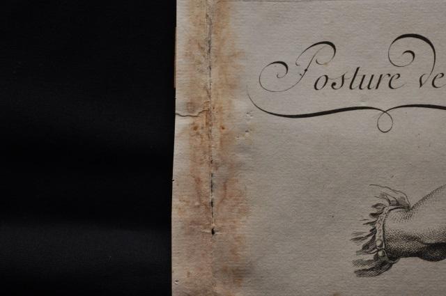フランス百科全書(種々なペン先の切り方)