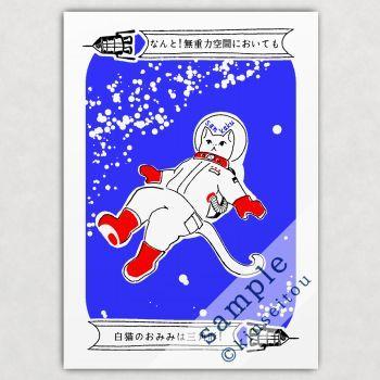 A4ポスター - なんと三角 無重力 - 金星灯百貨店