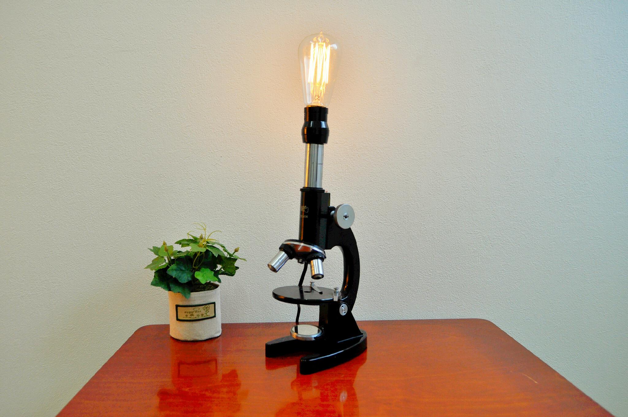 顕微鏡×スタンドライト(照明)