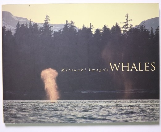 Mitsuaki Iwago's Whales / Mitsuaki Iwago