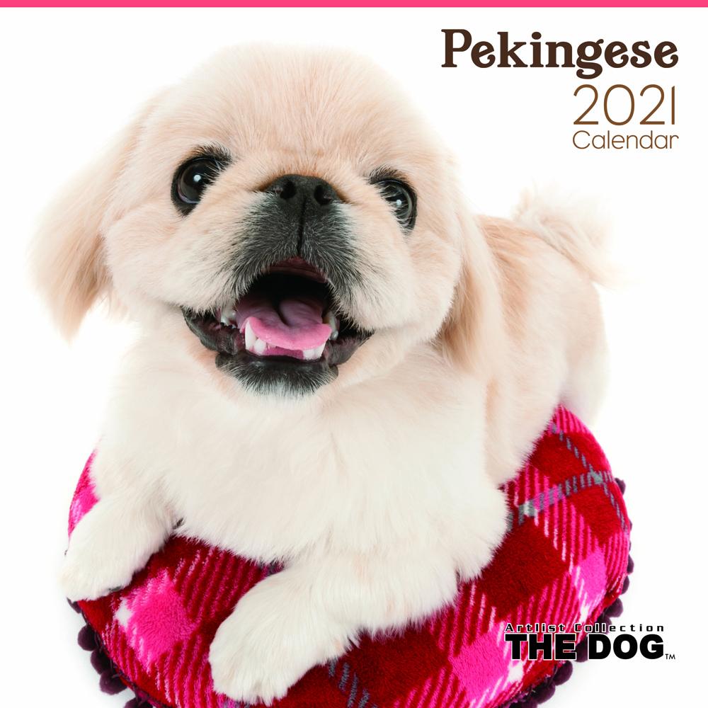 2021年 THE DOGカレンダー【大判サイズ】ペキニーズ