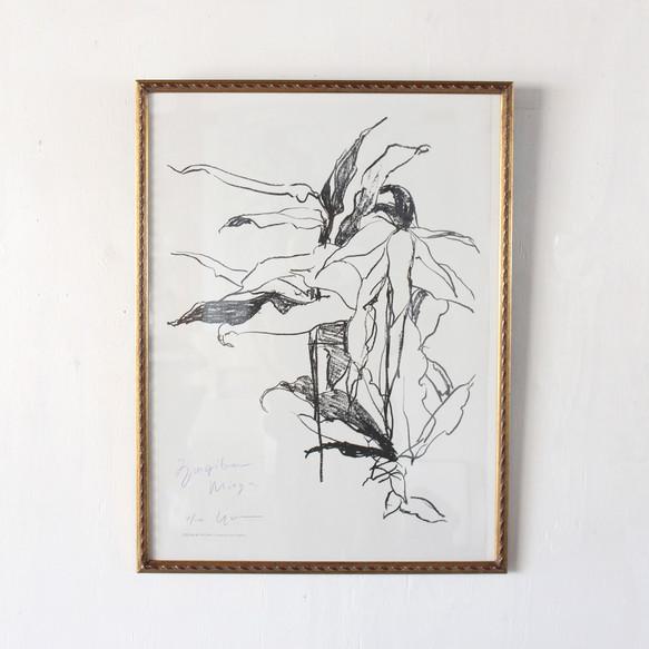 植物ドローイングポスター / 額縁付き FLORA & FAURA ・TAMARIインテリア