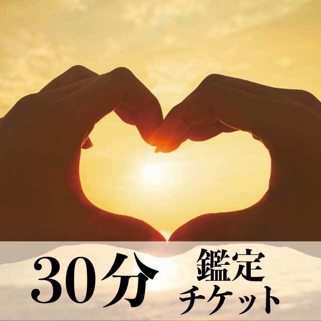 30分鑑定チケット