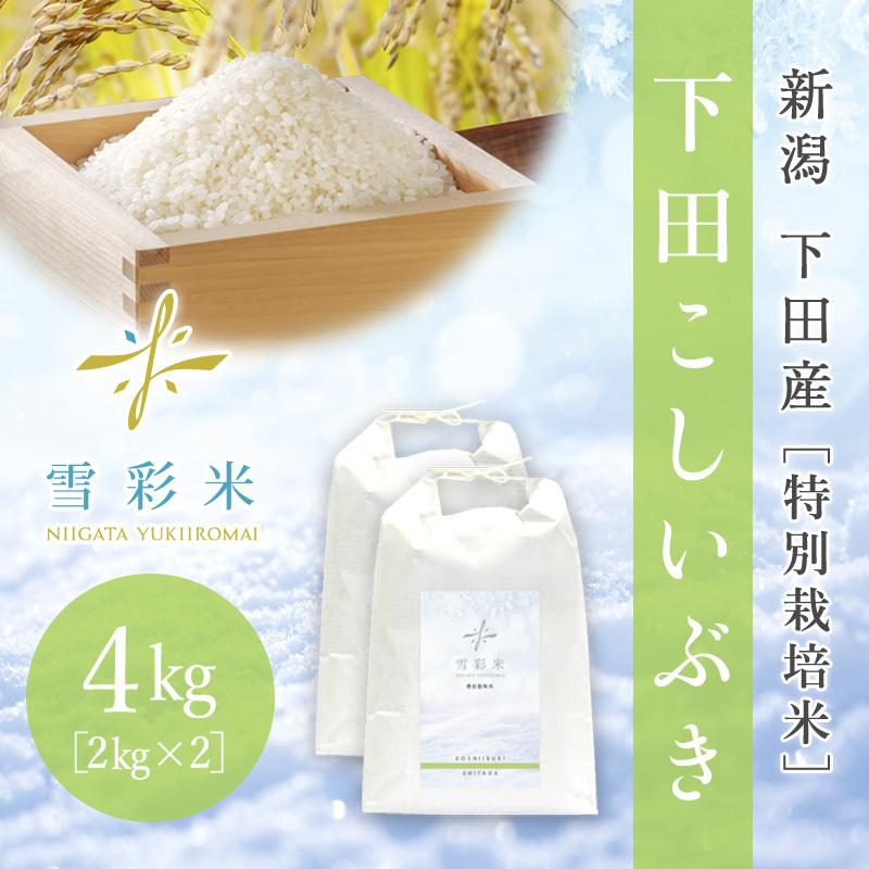 【雪彩米】下田産 特別栽培米 新米 令和2年産 下田こしいぶき 4kg
