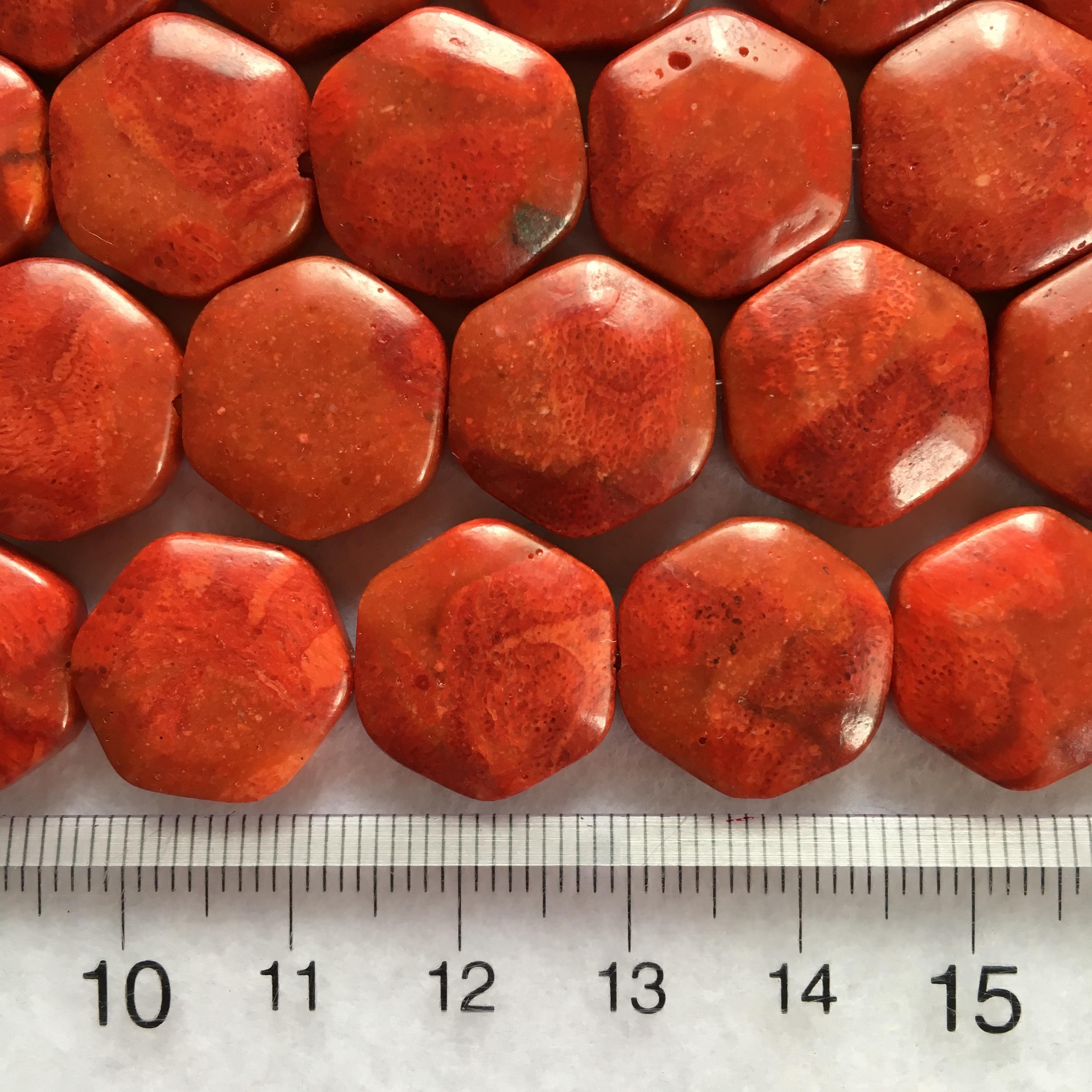スポンジサンゴ 六角形 約15mm 連材【190132】