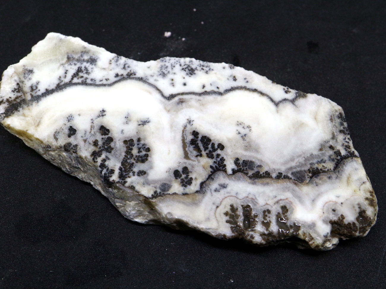 カリフォルニア産 シルバーレースオニキス 64,3g 原石 SLO006