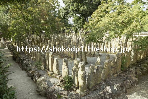 五百羅漢(北条石仏)278
