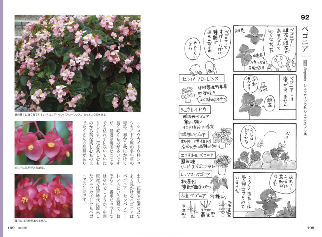 [書籍]『おもしろ植物図鑑』 - 画像5