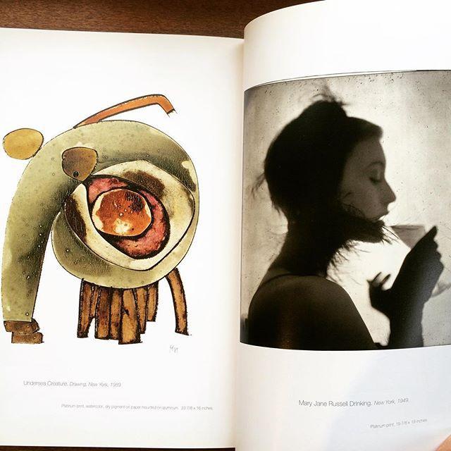 写真集「A Notebook at Random/Irving Penn」 - 画像2