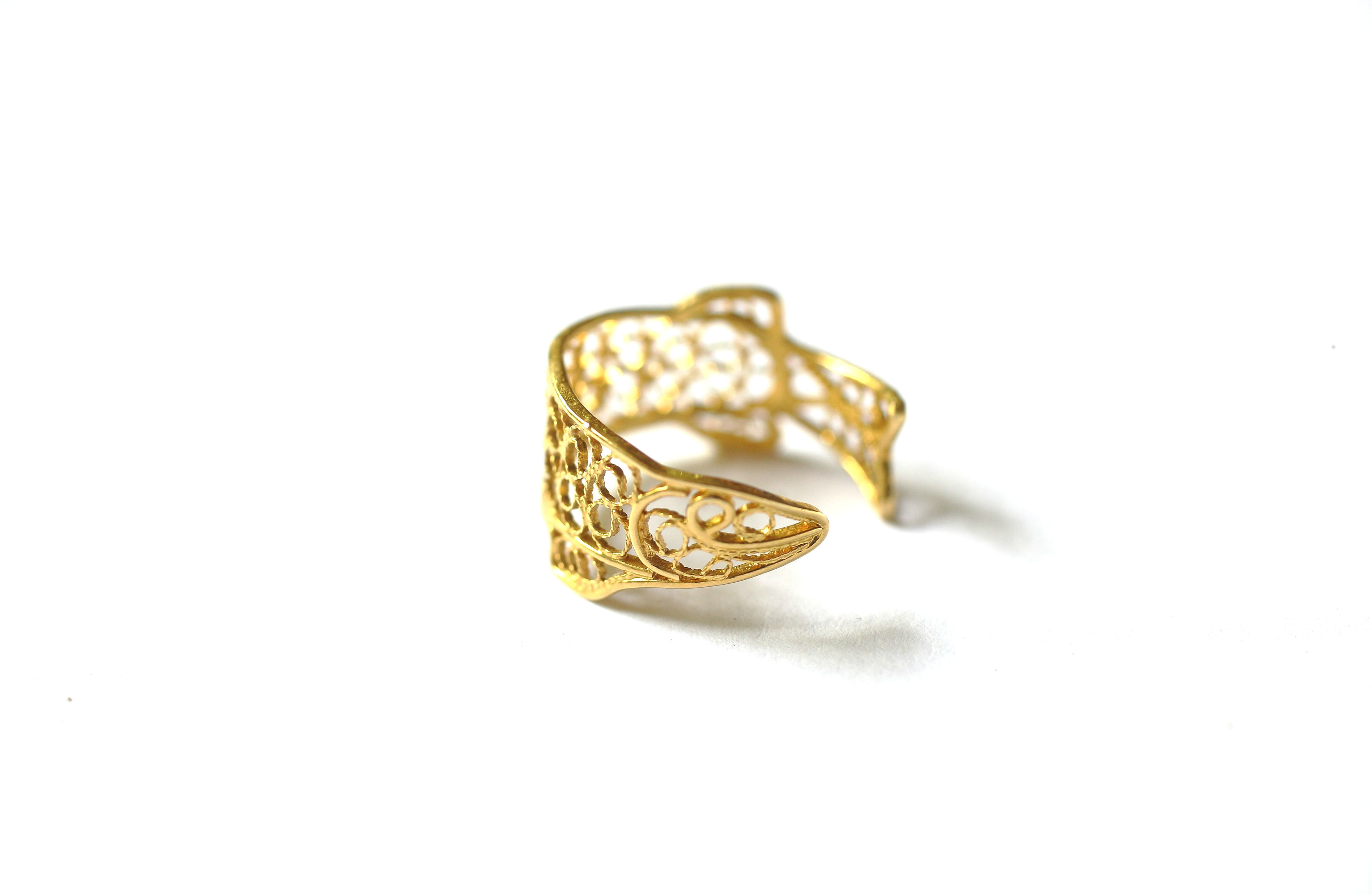 Gold fish arond your finger / B