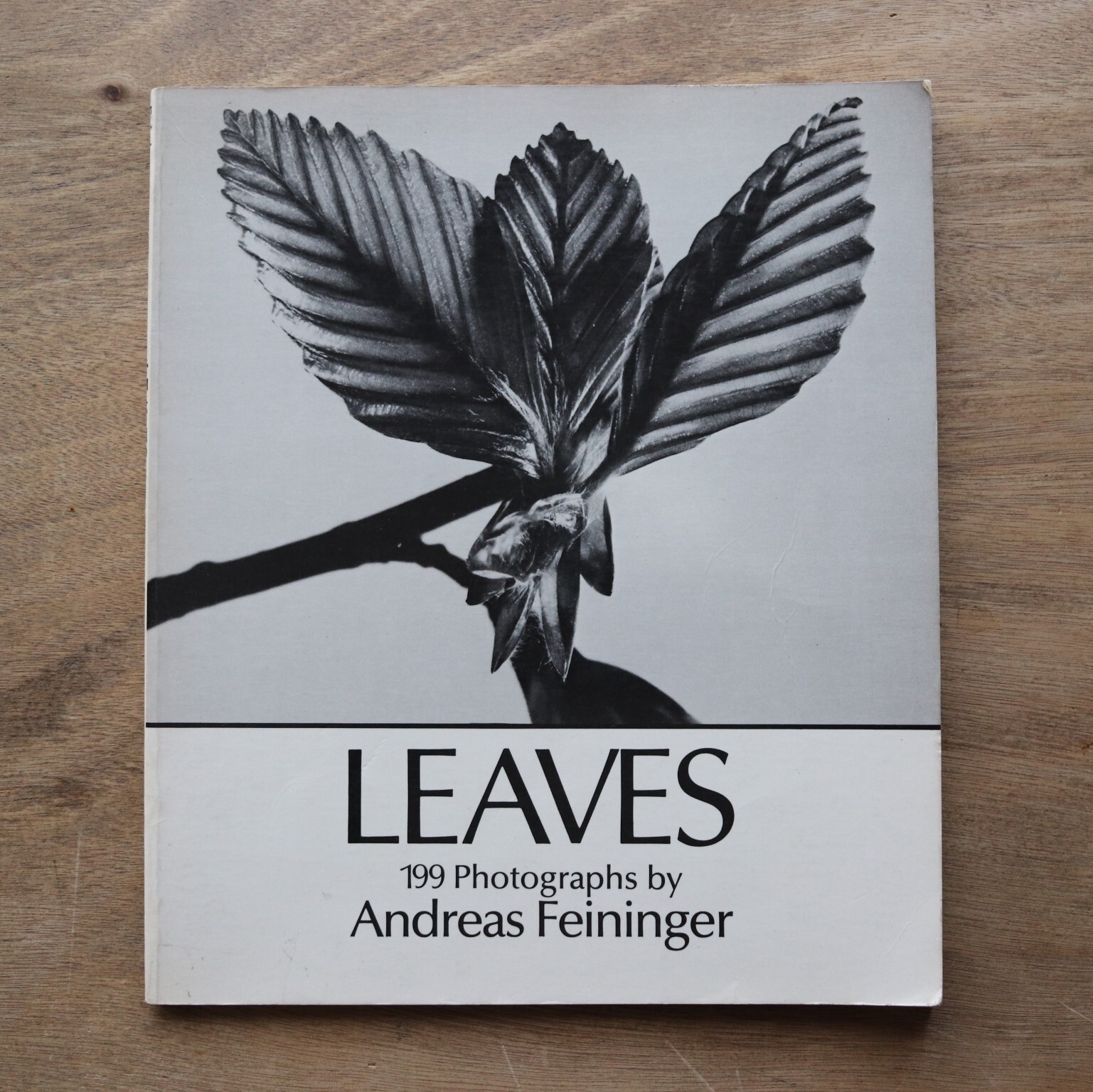 Leaves: 199 photographs / Andreas Feininger / アンドレアス・ファイニンガー