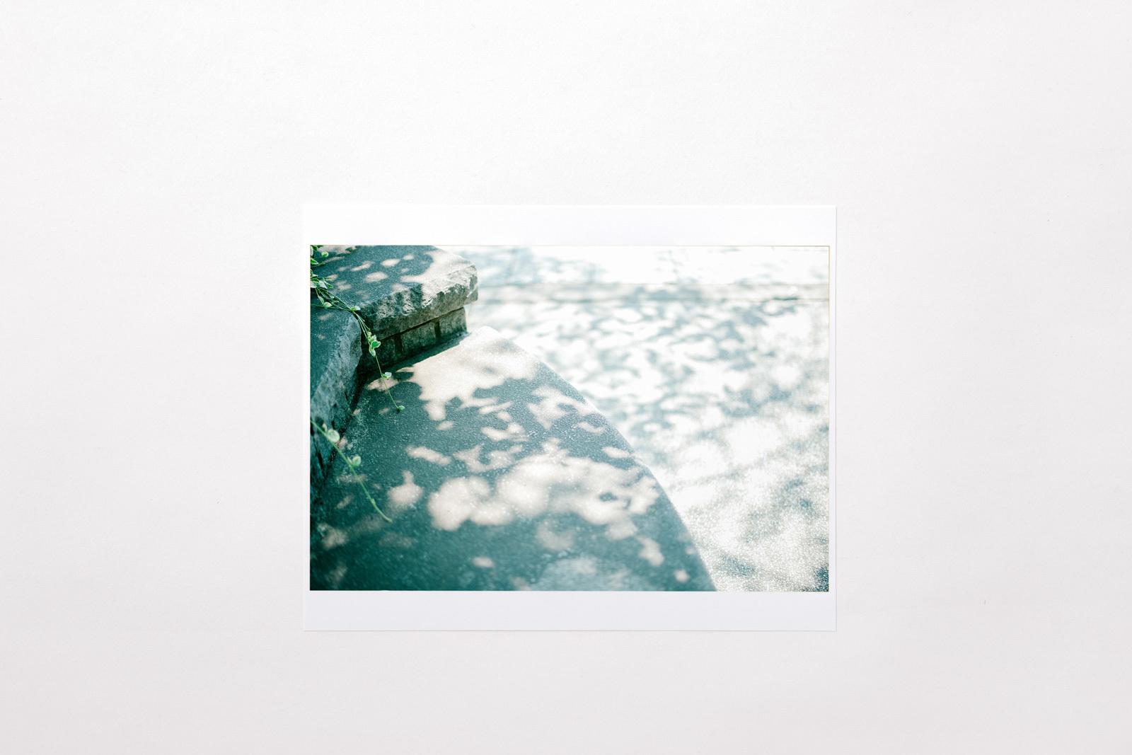 Photograph 07