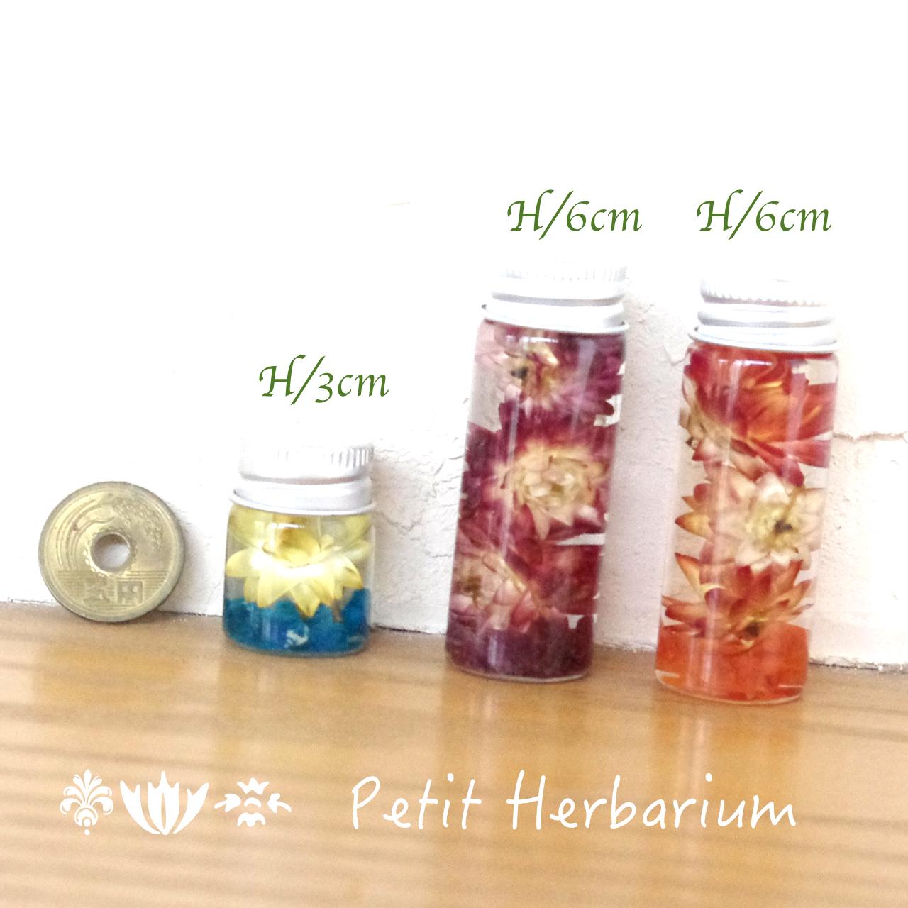 【Petit Vol.3】パワーストーンハーバリウム *ハートの輝き♪ピンクトルマリンとヘリクリサム*