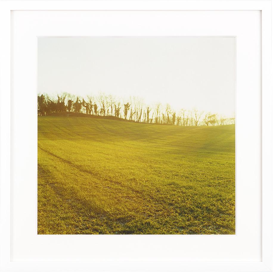 冬のジロロモーニ農園 #1