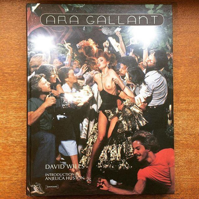 写真集「Ara Gallant」 - 画像1