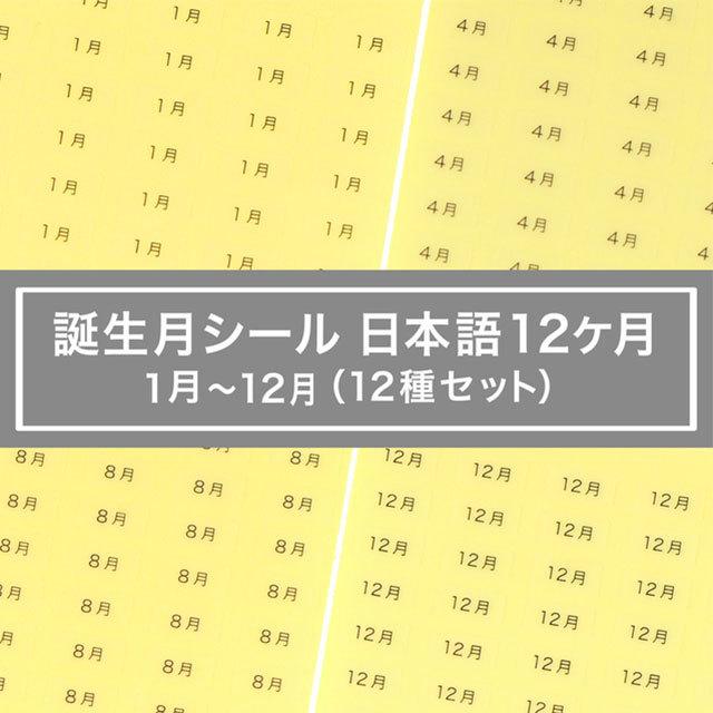 台紙用シール 誕生月12ヶ月セット 日本語 10×5mm 600枚 クリア